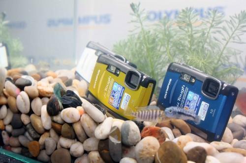 Mju Tough 6000 與它的上一代機款 Mju 1050SW 一樣,同樣設有數款機身顏色供用家選擇,分別為藍色、白色、橙色及黃色。