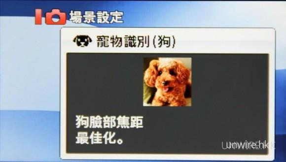 極有創意的寵物識別(狗)的模式,愛為寵物拍照的朋友,相信對這個功能必感興趣。