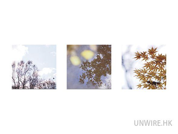 unwire_12