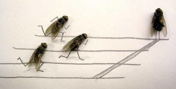 feeldesain-Dead-Flies-Art-by-Flychelangelo