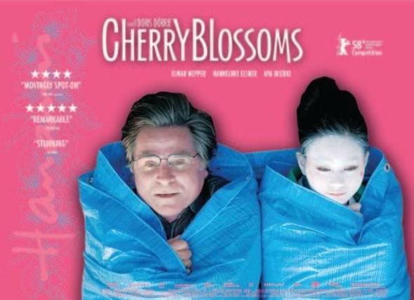 Cherry_Blossoms_Quad_copy_667_500_85