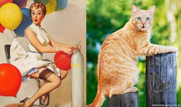 pinupcats19-610x361