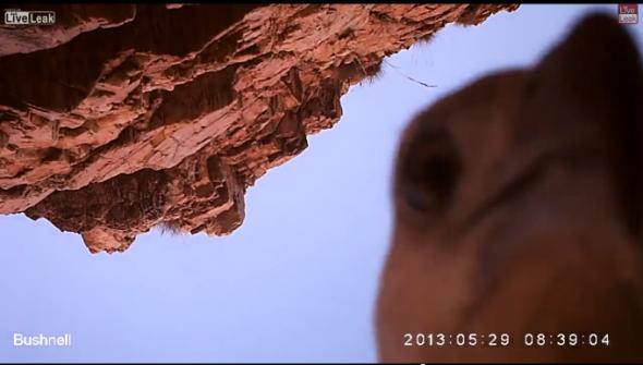 Screen-Shot-2013-12-03-at-12.49.20-PM-680x387