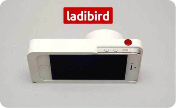 213821_LadibirdPhotoforNR-680x418