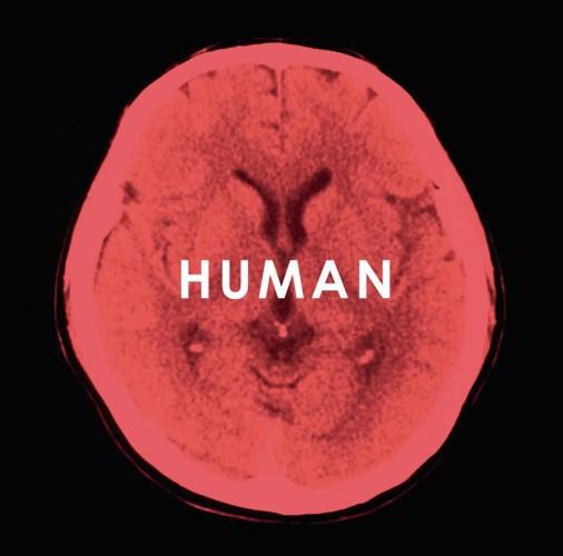 humanfu1