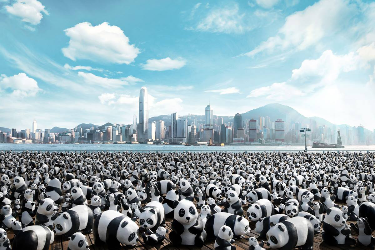 香港將會「新增」 1,600 隻熊貓!