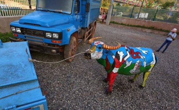 buffalo-bodypainting-7[5]
