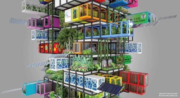 hive-inn-city-farm.jpg.650x0_q85_crop-smart