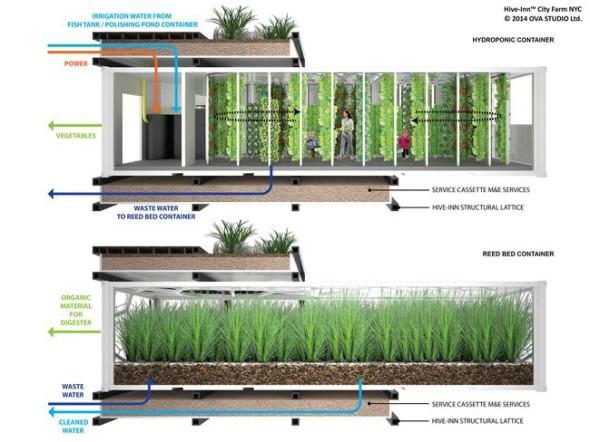 hive-inn-grow-container.jpg.650x0_q85_crop-smart