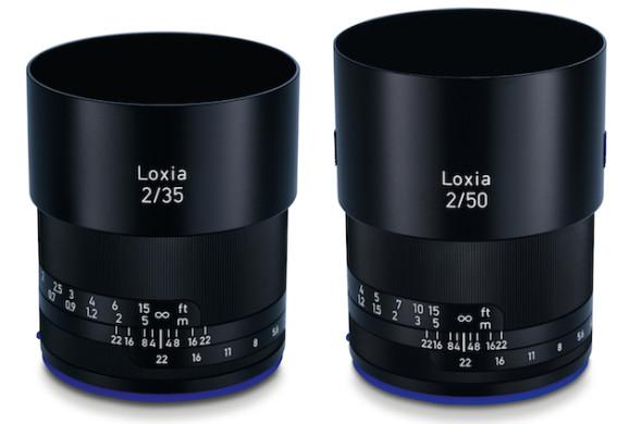 loxia1