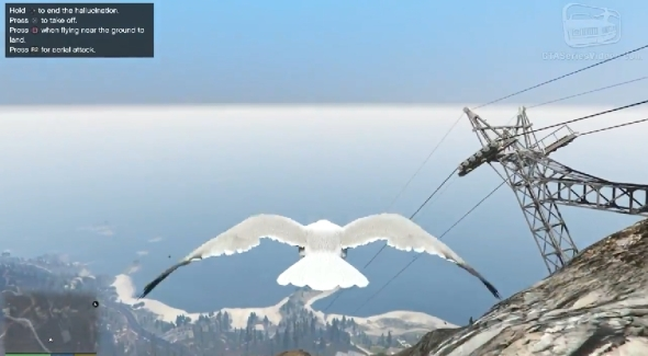 2014-11-20 16_29_14-GTA 5 - Play as a Bird (Chicken, Seagull, Hawk, Crow and more) [PS4 & Xbox One]