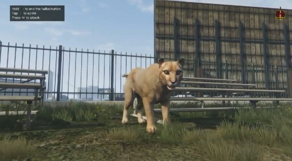 2014-11-20 16_35_47-GTA 5 PS4 Next Gen - Play As Mountain Lion,Dog,Wolf & More New Peyote Locations