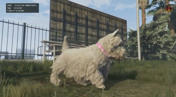 2014-11-20 16_38_14-GTA 5 PS4 Next Gen - Play As Mountain Lion,Dog,Wolf & More New Peyote Locations