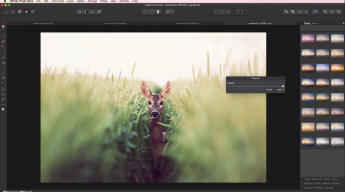 2015-02-10 13_17_37-Affinity Photo - Professional image editing software for Mac