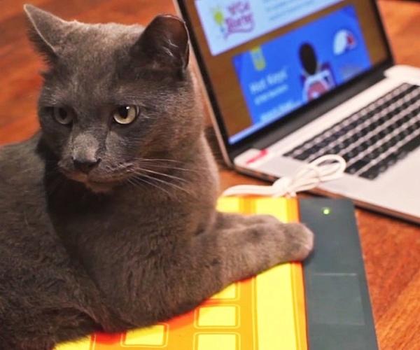 usb-heated-keyboard-cat-bed