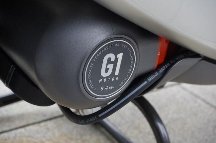 ggr13_0