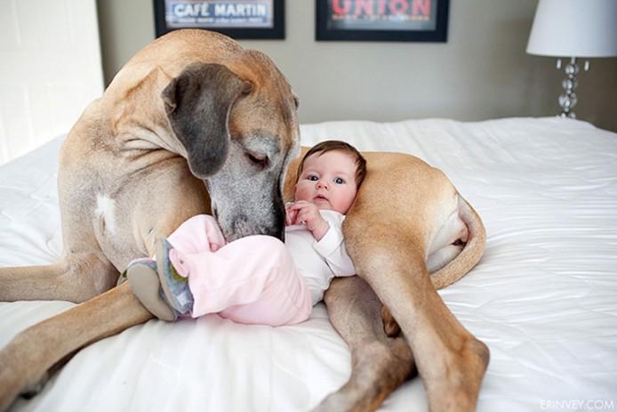 kids-dogs-12