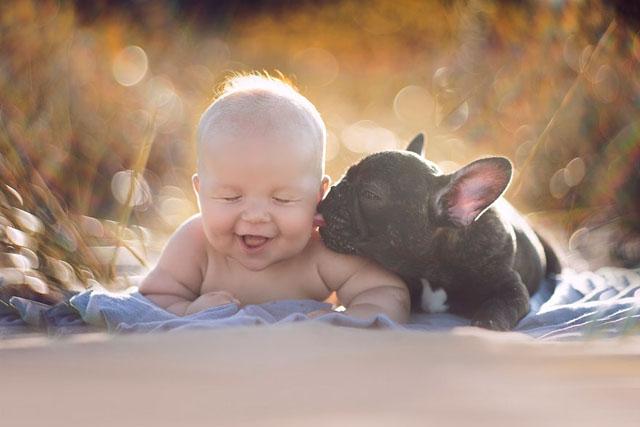 babyandbulldog1 (1)