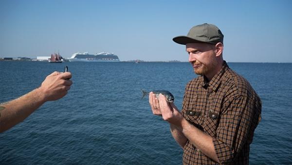 一般情況下釣到細魚拎住影相……