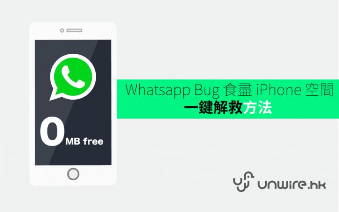 whatsappbug